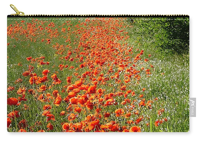 Poppies Carry-all Pouch featuring the photograph Poppies Awash by Bob Kemp