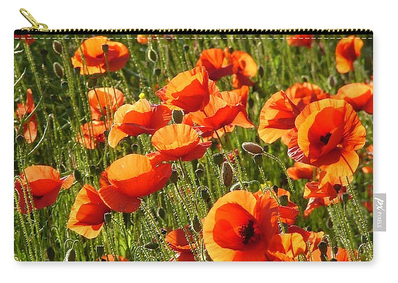 Poppies Carry-all Pouch featuring the photograph Poppies by Bob Kemp