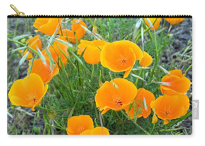 Floral Carry-all Pouch featuring the photograph Poppies II by Randall Ingalls