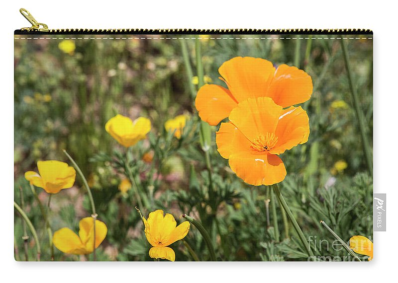Desert Carry-all Pouch featuring the photograph Poppies in Bloom by Kathy McClure