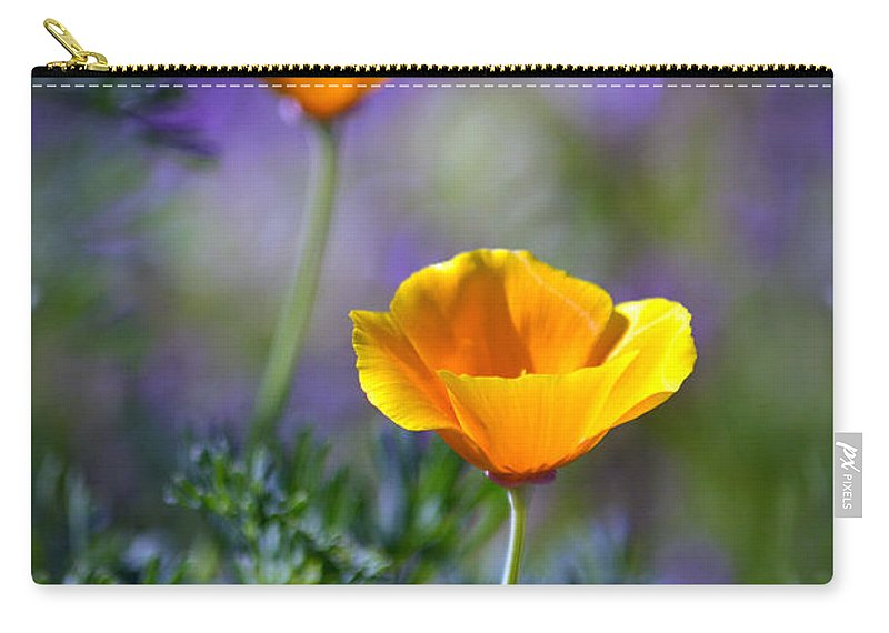 California Poppies Carry-all Pouch featuring the photograph Poppy Ballet by Deb Halloran