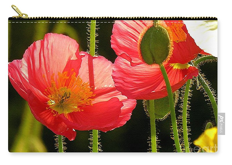 Poppy Carry-all Pouch featuring the photograph Poppy by Diane Greco-Lesser