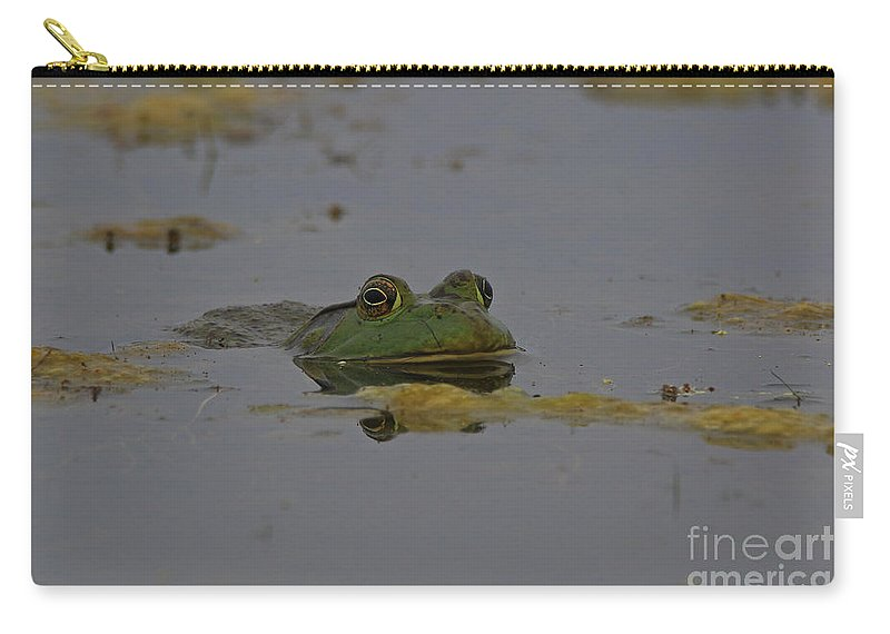 Bullfrog Carry-all Pouch featuring the photograph Poppy Eyes by Craig Corwin