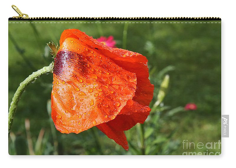 Flower Carry-all Pouch featuring the photograph Red Poppy II by Teresa Zieba