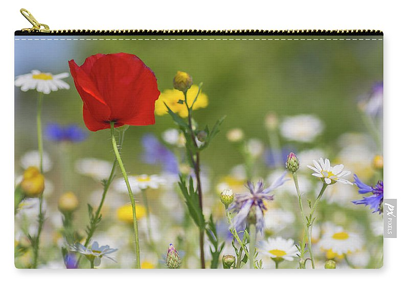 Poppy Carry-all Pouch featuring the photograph Poppy In Meadow by Diane Fifield