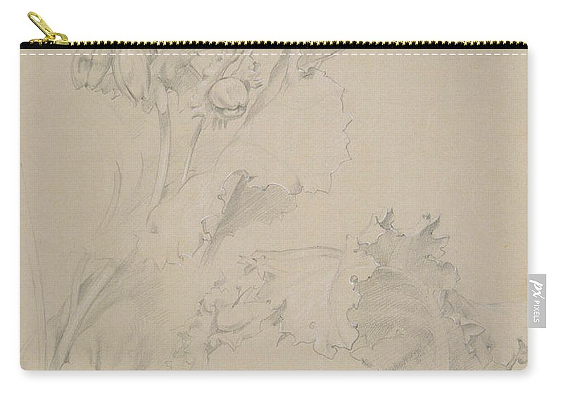 Still-life Carry-all Pouch featuring the drawing Poppy Leaves by Albert Williams