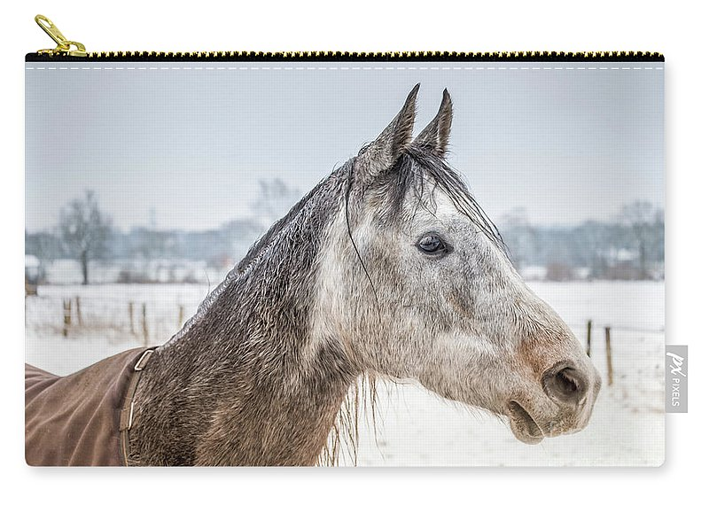 Portrait Amigo By Marina Usmanskaya Carry-all Pouch featuring the photograph Portrait Amigo by Marina Usmanskaya