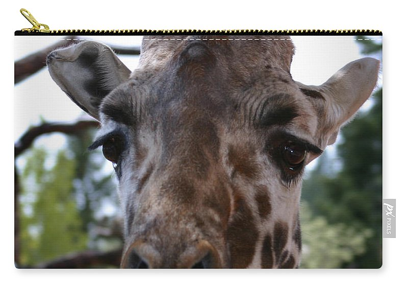 Giraffe Carry-all Pouch featuring the photograph Portrait Of A Giraffe by Anthony Jones