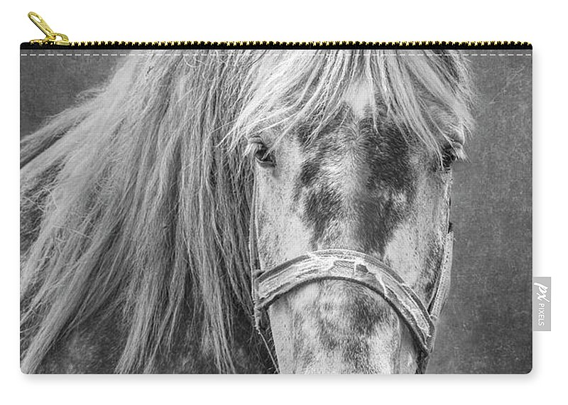 Animal Carry-all Pouch featuring the photograph Portrait Of A Horse by Tom Mc Nemar