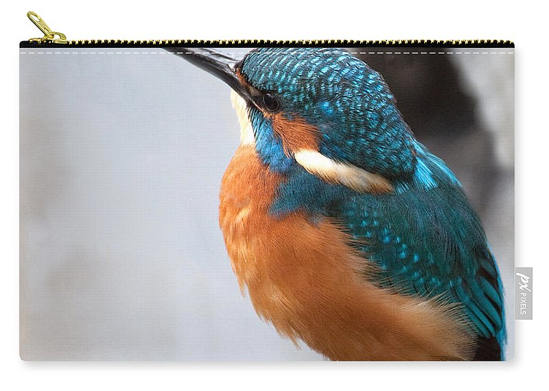 Kingfisher Carry-all Pouch featuring the photograph Portrait Of A Kingfisher by Bob Kemp