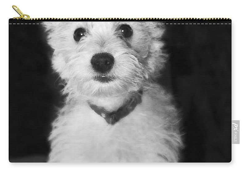 White Carry-all Pouch featuring the photograph Portrait Of A Puppy In Black And White by Terri Waters