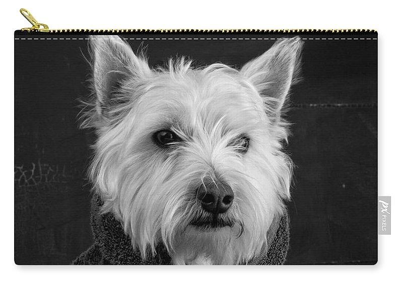 Portrait Of A Westie Dog Carry-all Pouch featuring the photograph Portrait Of A Westie Dog by Edward Fielding