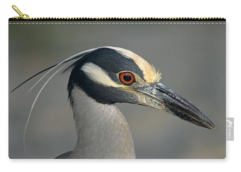 Animal Carry-all Pouch featuring the photograph Portrait Of A Yellow Crowned Heron by John Harmon