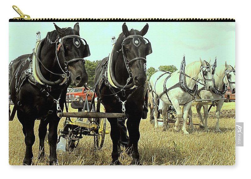 Horse Carry-all Pouch featuring the photograph Posing by Ian MacDonald