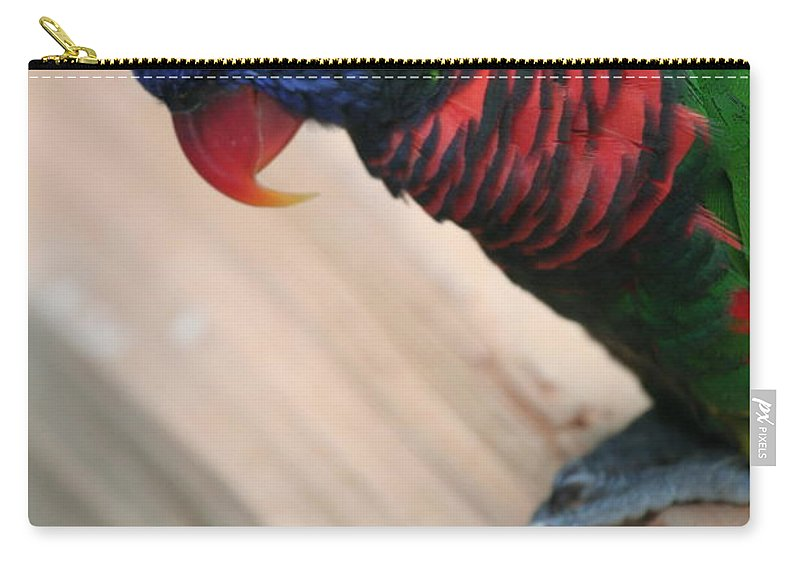 Lorikeet Carry-all Pouch featuring the photograph Post Position by Laddie Halupa