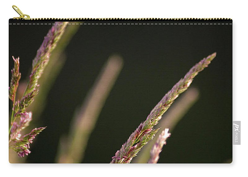 Background Carry-all Pouch featuring the photograph Poster Grass by Alan Look