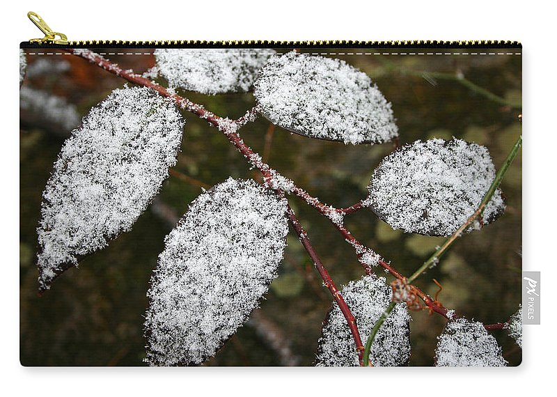 Winter Season Cold Snow Tree Branch Leaf Leaves White Green Frosted Powder Carry-all Pouch featuring the photograph Powdered by Andrei Shliakhau