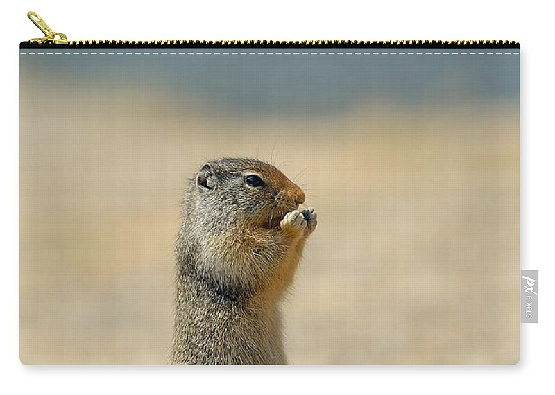 Prairie Dog Carry-all Pouch featuring the photograph Prairie Dog by Sebastian Musial