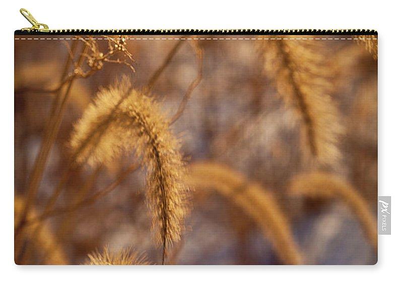 Midewin Carry-all Pouch featuring the photograph Prairie Grass Detail by Steve Gadomski