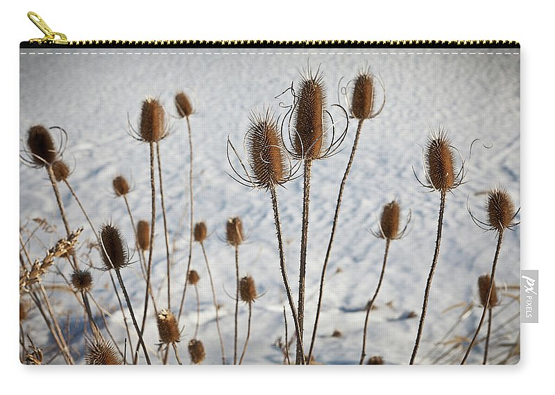 Winter Carry-all Pouch featuring the photograph Prairie Seedheads by Steve Gadomski