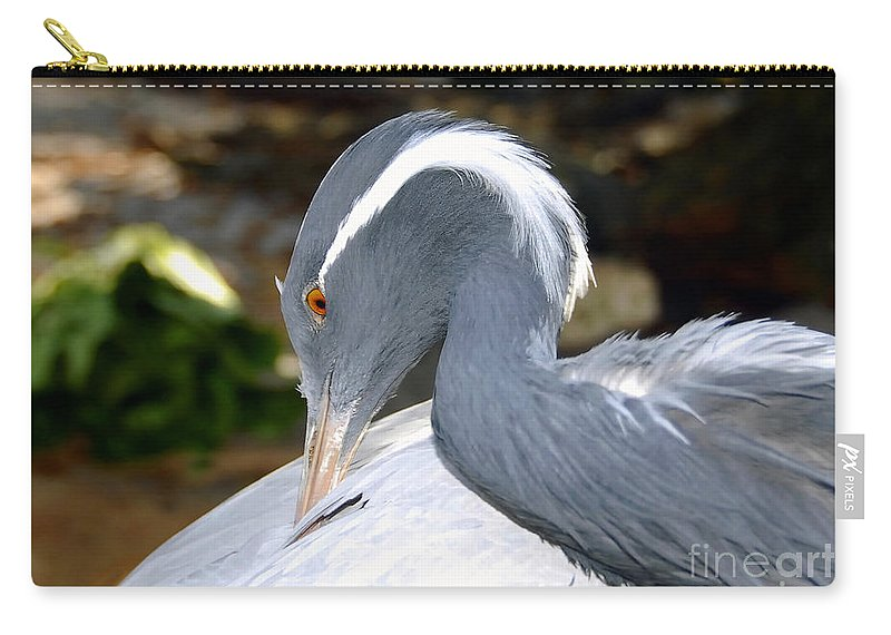 Bird Carry-all Pouch featuring the photograph Preening Bird by David Lee Thompson