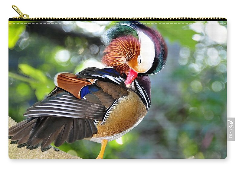 Preening Carry-all Pouch featuring the photograph Preening Duck by David Lee Thompson