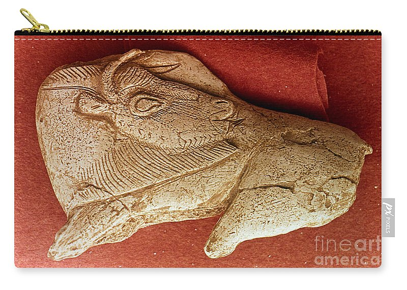 Ancient Carry-all Pouch featuring the photograph Prehistoric Bison Carving by Granger
