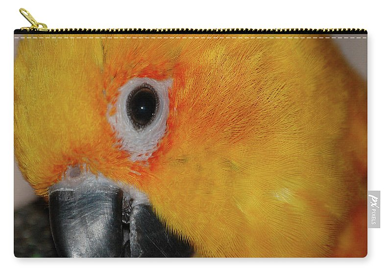 Bird Carry-all Pouch featuring the digital art Pretty Girl by DigiArt Diaries by Vicky B Fuller