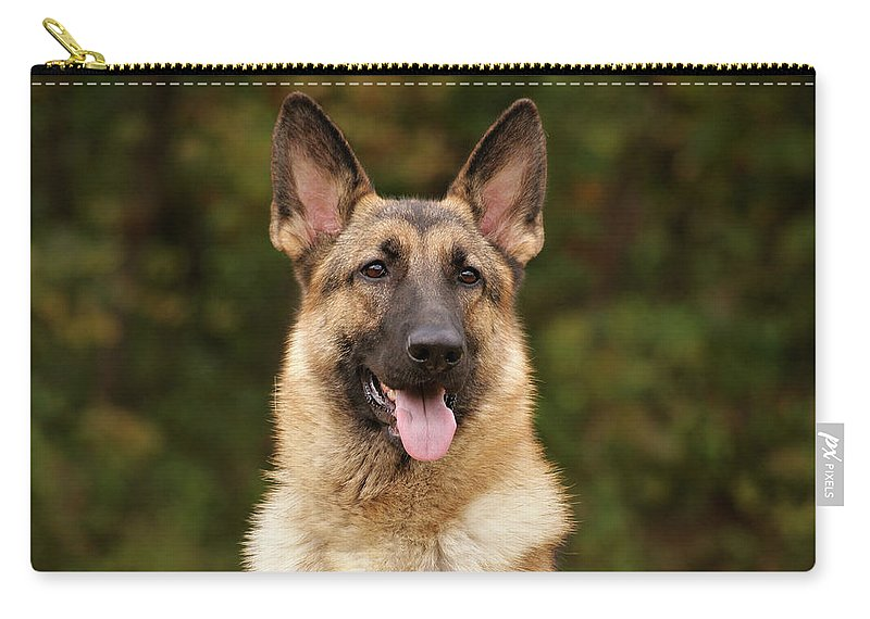 German Shepherd Dog Carry-all Pouch featuring the photograph Pretty Girl by Sandy Keeton