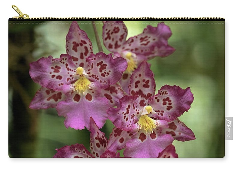 Orchids Carry-all Pouch featuring the photograph Pretty In Pink by Susan Rissi Tregoning