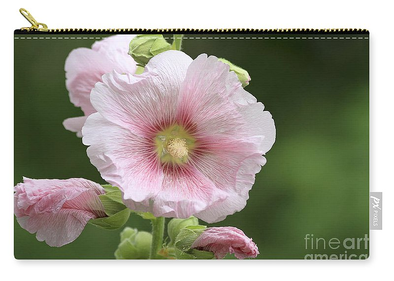 Flower Carry-all Pouch featuring the photograph Pretty In Pink by Teresa Zieba