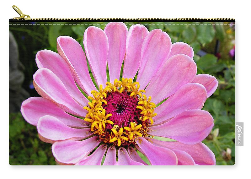 Flower Carry-all Pouch featuring the photograph Pretty In Pink Zinnia by Marilyn Hunt