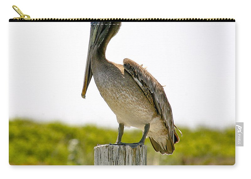 Pelican Carry-all Pouch featuring the photograph Pretty Pelican by Marilyn Hunt