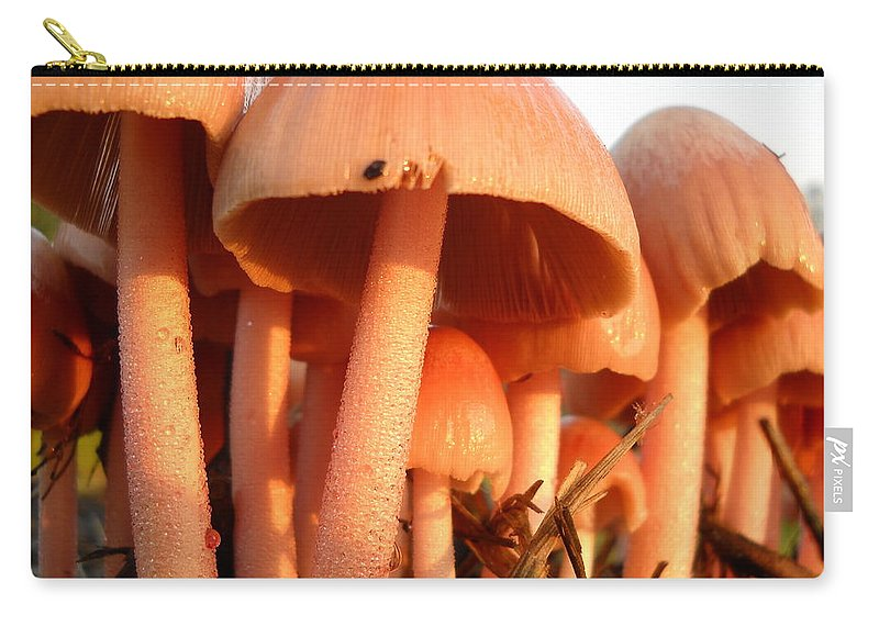 Pink Mushroom Carry-all Pouch featuring the photograph Pretty Pink Fairy Shelters by Kent Lorentzen