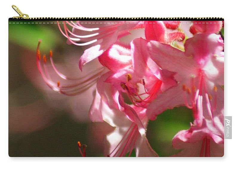 Flowers Carry-all Pouch featuring the photograph Pretty Pink by Marty Koch