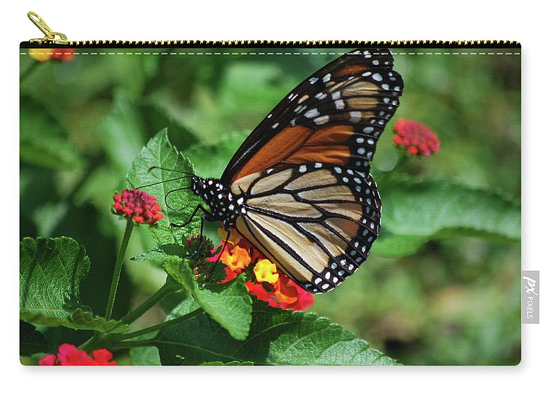 Monarch Carry-all Pouch featuring the photograph Pretty Spots by Lori Tambakis