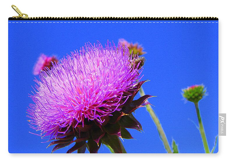 Thistle Bloom Carry-all Pouch featuring the photograph Pretty Weed by J R  Seymour