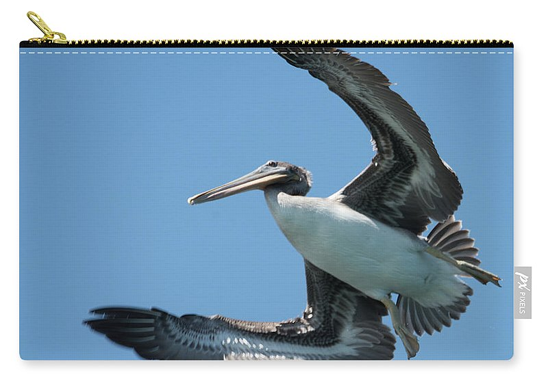Natanson Carry-all Pouch featuring the photograph Prey Spotted by Steven Natanson