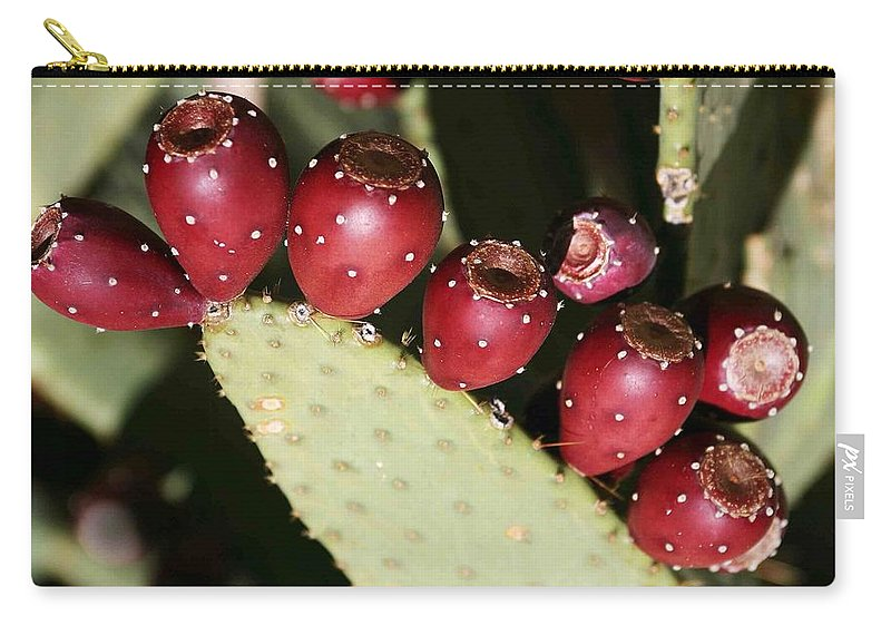 Plant Carry-all Pouch featuring the photograph Prickly Pear-jerome Arizona by Nelson Strong