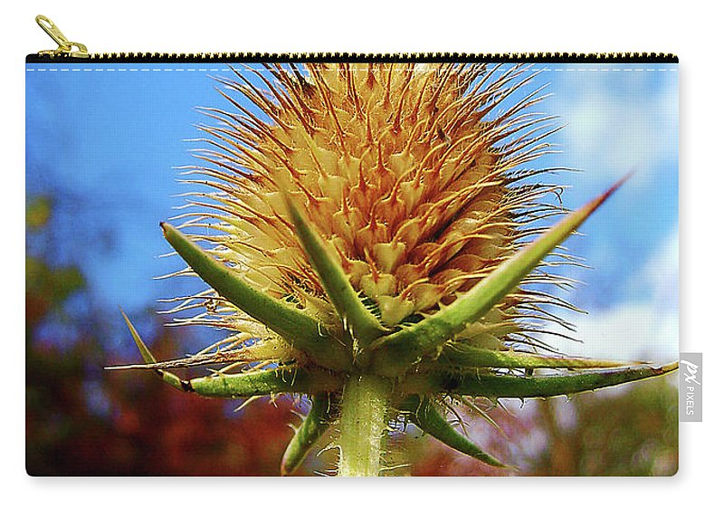 Thistle Carry-all Pouch featuring the photograph Prickly Thistle by Nina Ficur Feenan