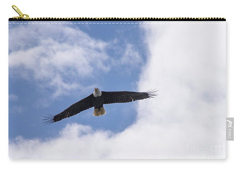 Eagle Carry-all Pouch featuring the photograph Prince Rupert Eagle Flight by Louise Magno