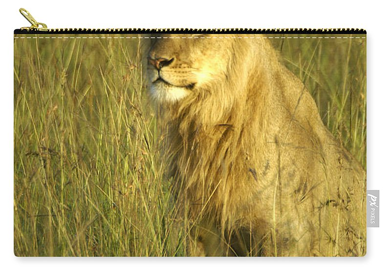 Africa Carry-all Pouch featuring the photograph Princely Lion by Michele Burgess