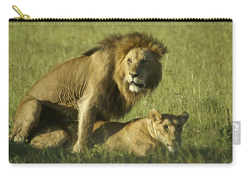Africa Carry-all Pouch featuring the photograph Privacy Please by Michele Burgess