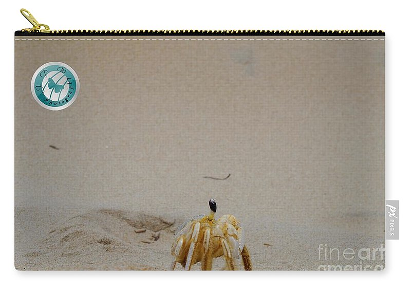 Beach Carry-all Pouch featuring the photograph Profile Of Our New Friend by Jannice Walker