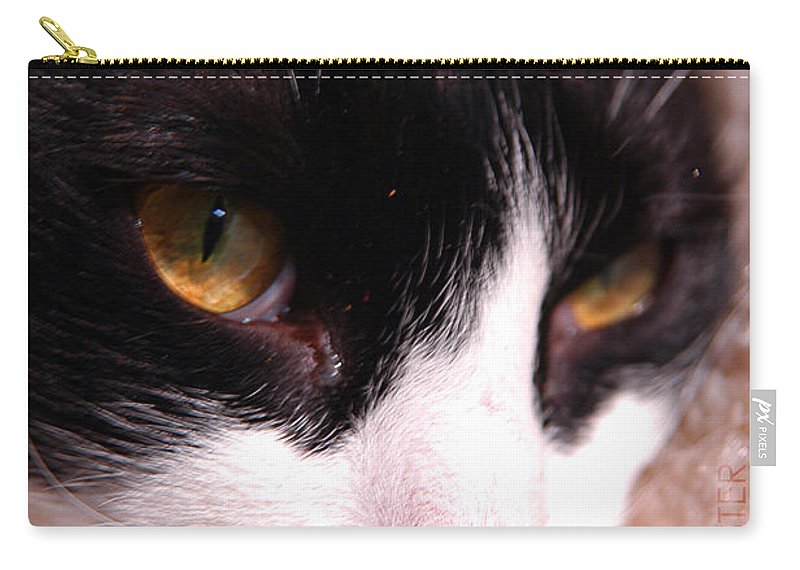 Clay Carry-all Pouch featuring the photograph Profile Of Paws by Clayton Bruster