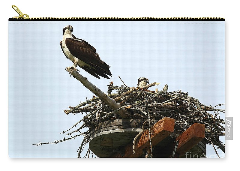 Osprey Carry-all Pouch featuring the photograph Protecting The Nest by Deborah Benoit