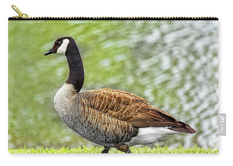 Goose Carry-all Pouch featuring the photograph Proud Goose by Kay Brewer
