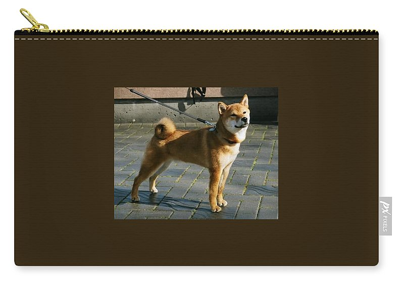 Dogs Carry-all Pouch featuring the photograph Proud Mary by Thomas Sexton