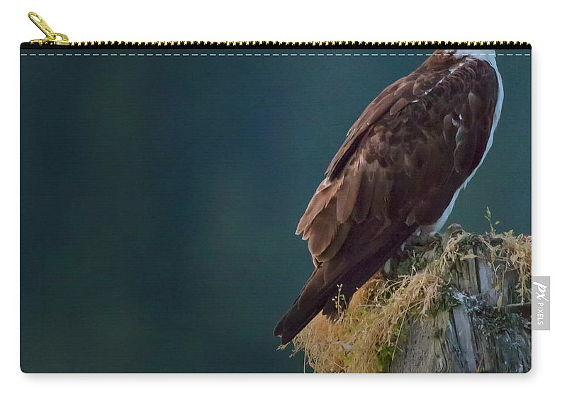 Osprey Carry-all Pouch featuring the photograph Proud Parent by Randy Hall