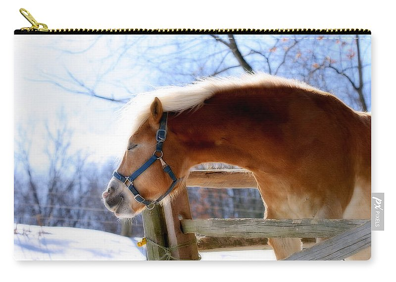 Horse Carry-all Pouch featuring the photograph Pssssssh.....it's Not Cold by Angela Rath